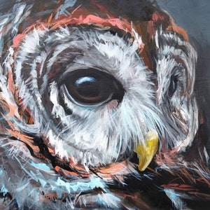 (CreativeWork) Barred Owl by Rebecca Hill. arcylic-painting. Shop online at Bluethumb.