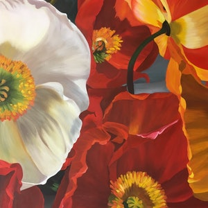(CreativeWork) Carnival Poppies by Patricia Hillard. arcylic-painting. Shop online at Bluethumb.