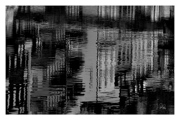 P 043 Reflection B&W