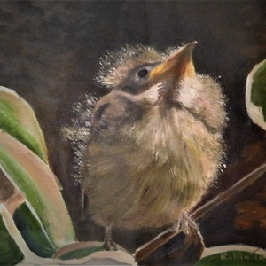 (CreativeWork) Baby Bird by Robin Tunnicliffe. oil-painting. Shop online at Bluethumb.