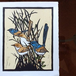 (CreativeWork) Blue Wrens Ed. 19 of 49 by Bing Davidson. print. Shop online at Bluethumb.