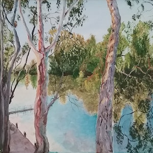 (CreativeWork) River Red Gums, Echuca VIC  by Monika Scheffler. arcylic-painting. Shop online at Bluethumb.