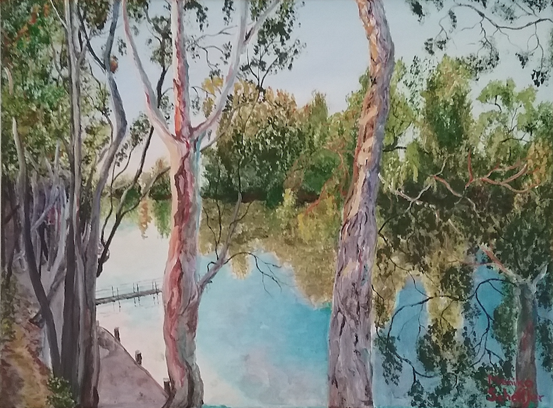 (CreativeWork) Framed: River Red Gums, Echuca VIC  by Monika Scheffler. Acrylic Paint. Shop online at Bluethumb.