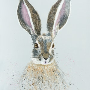 (CreativeWork) Sammy  - fine art print of a rabbit, hare, realistic animal Ed. 4 of 150 by Johanna Larkin. print. Shop online at Bluethumb.