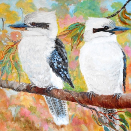 (CreativeWork) Two Kookaburras by Yvonne West. Oil Paint. Shop online at Bluethumb.