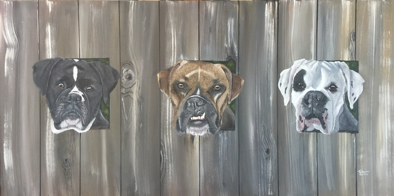 (CreativeWork) Mr Snaggle Tooth and Friends - Looking through the fence - Boxer dogs by Johanna Larkin. arcylic-painting. Shop online at Bluethumb.