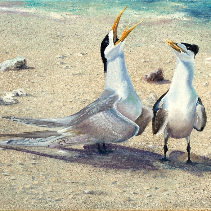 (CreativeWork) Proclaiming His Love by Rhonda Armistead. oil-painting. Shop online at Bluethumb.