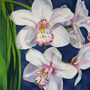 (CreativeWork) White Orchids by Suzanne Perez. other-media. Shop online at Bluethumb.