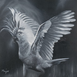 (CreativeWork) Cockatoo by Keili Major. oil-painting. Shop online at Bluethumb.