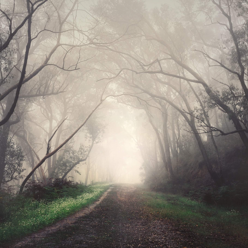 (CreativeWork) Witches Road Games (i) by Alex Frayne. photograph. Shop online at Bluethumb.