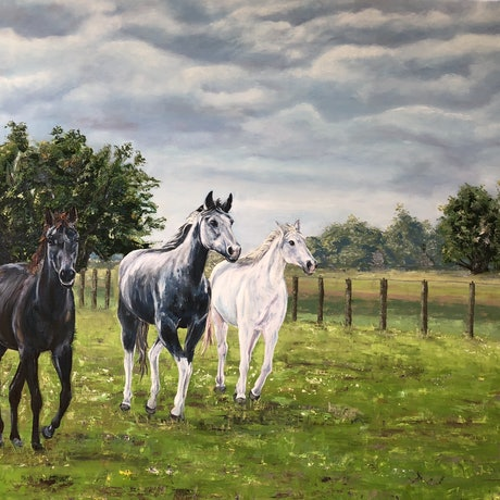 (CreativeWork) Grey morning by Shannan Whitby. Oil Paint. Shop online at Bluethumb.