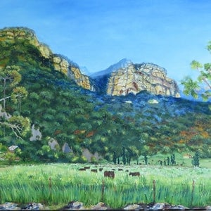 (CreativeWork) Capertee Valley in Spring  by Monika Scheffler. oil-painting. Shop online at Bluethumb.