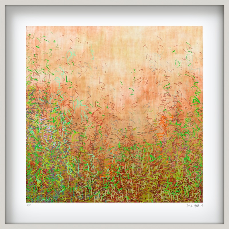 (CreativeWork) 'Blushing Garden' in white box frame   Ed. 5 of 75 by George Hall. Print. Shop online at Bluethumb.