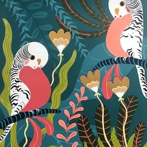 (CreativeWork) Tropical Budgies by emma whitelaw. arcylic-painting. Shop online at Bluethumb.