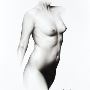 (CreativeWork) Nude Woman Charcoal Study 68 by Ashvin Harrison. drawing. Shop online at Bluethumb.