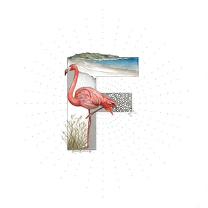 (CreativeWork) F is for Flamingo  by Bonnie Larden. mixed-media. Shop online at Bluethumb.