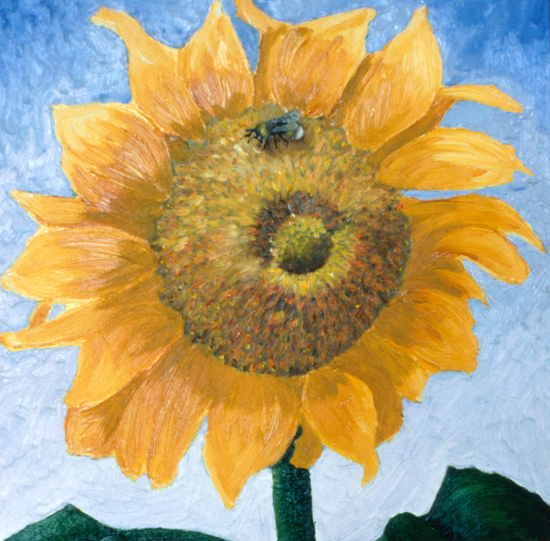 (CreativeWork) The Bumblebee & The Sunflower Ed. 1 of 10 by Steve Munro. print. Shop online at Bluethumb.