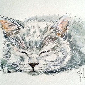 (CreativeWork) Sleeping Cat 2 by Olga Kolesnik. watercolour. Shop online at Bluethumb.