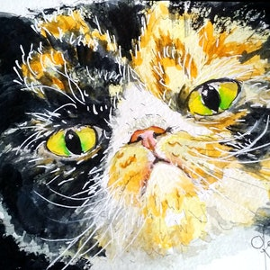 (CreativeWork) Calico Cat 1 by Olga Kolesnik. watercolour. Shop online at Bluethumb.