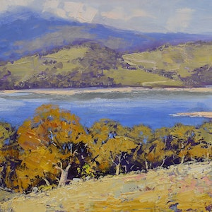 (CreativeWork) View to lake Lyell, nsw by Graham Gercken. oil-painting. Shop online at Bluethumb.