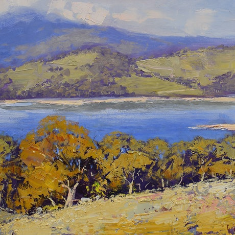 (CreativeWork) View to lake Lyell, nsw by Graham Gercken. Oil Paint. Shop online at Bluethumb.