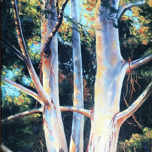 (CreativeWork) Ghost Gum by David Clare. oil-painting. Shop online at Bluethumb.