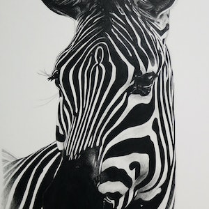 (CreativeWork) Zebra Portrait 2 LIMITED EDITION DIGITAL PRINT Ed. 2 of 50 by Cherie Mongony. print. Shop online at Bluethumb.