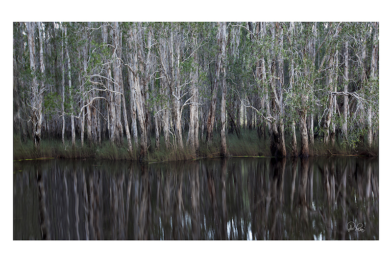 (CreativeWork) P 055 Silence  by Peter Henning. photograph. Shop online at Bluethumb.