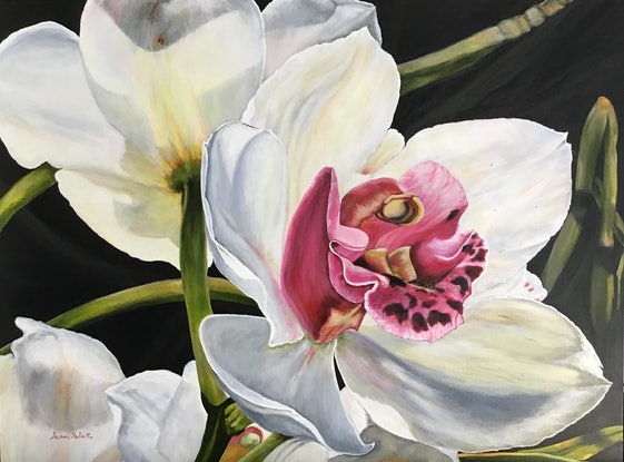 (CreativeWork) 'Pure Elegance' White Orchid, artists acrylics and oil by Sharon DeSailly. Mixed Media. Shop online at Bluethumb.