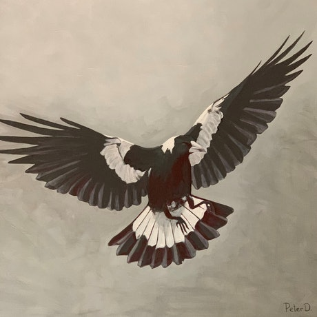 (CreativeWork) Magpie season by peter dutton. Acrylic Paint. Shop online at Bluethumb.