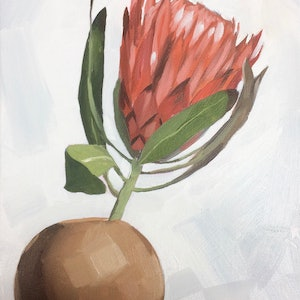 (CreativeWork) Protea Study #1 by Tom Parsons. oil-painting. Shop online at Bluethumb.
