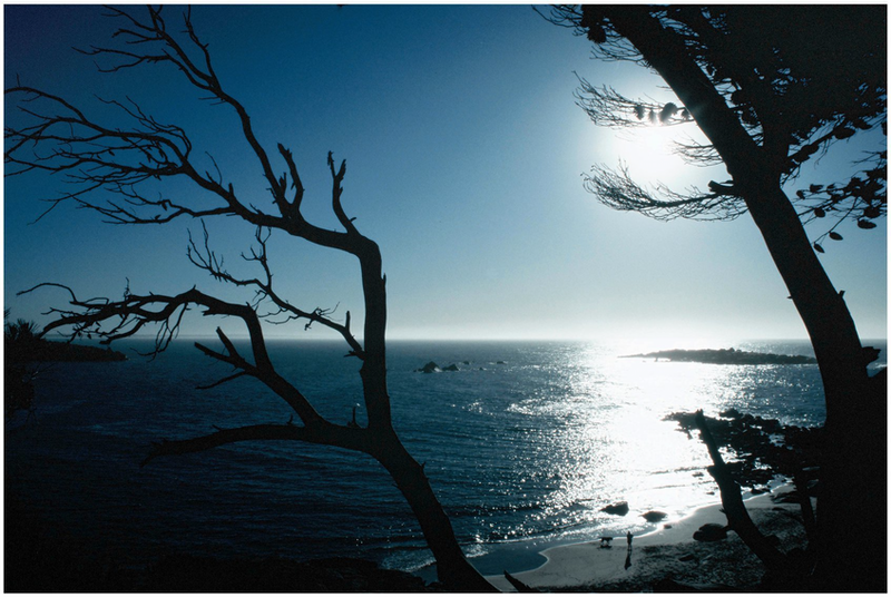 (CreativeWork) Horshoe Bay, Early by Alex Frayne. photograph. Shop online at Bluethumb.