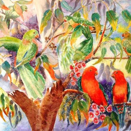 (CreativeWork) My King Parrots by Yvonne West. Watercolour Paint. Shop online at Bluethumb.