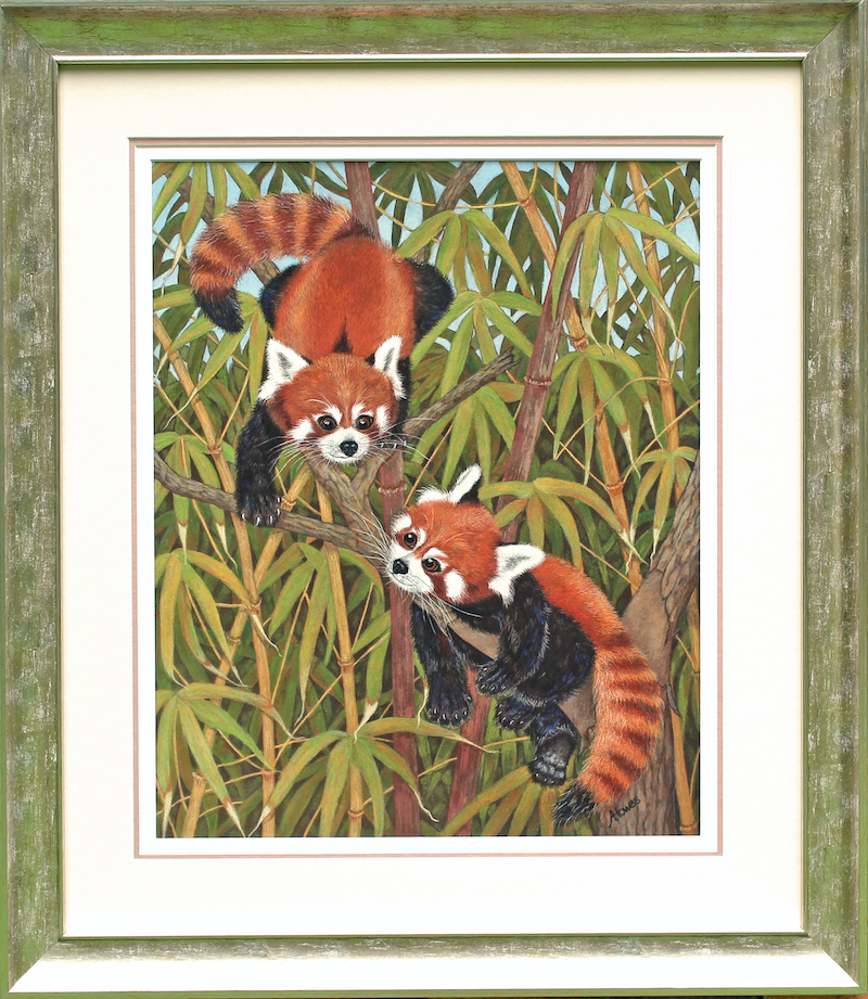 (CreativeWork) Red Panda Cubs by annelise howes. drawing. Shop online at Bluethumb.