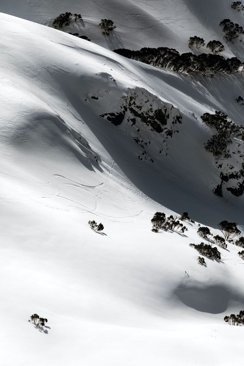 (CreativeWork) Alpine 1/7 by Penny Prangnell. photograph. Shop online at Bluethumb.