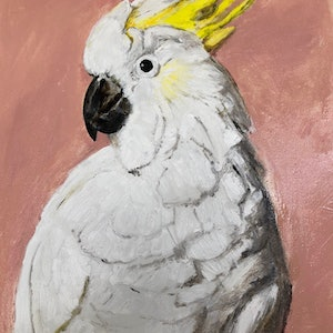 (CreativeWork) THE PINK COCKATOO by toto Alay. oil-painting. Shop online at Bluethumb.