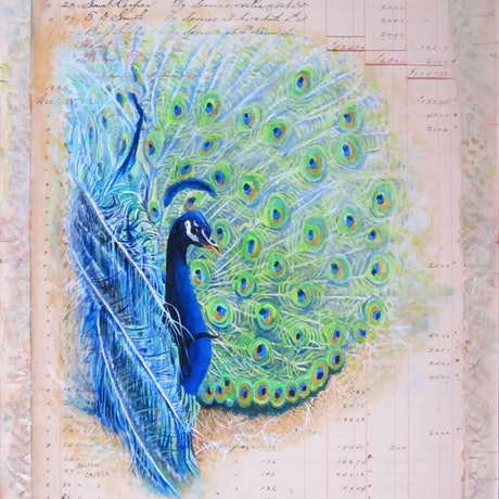 (CreativeWork) Meet Bob - The Peacock by Jillian Crider. Acrylic Paint. Shop online at Bluethumb.