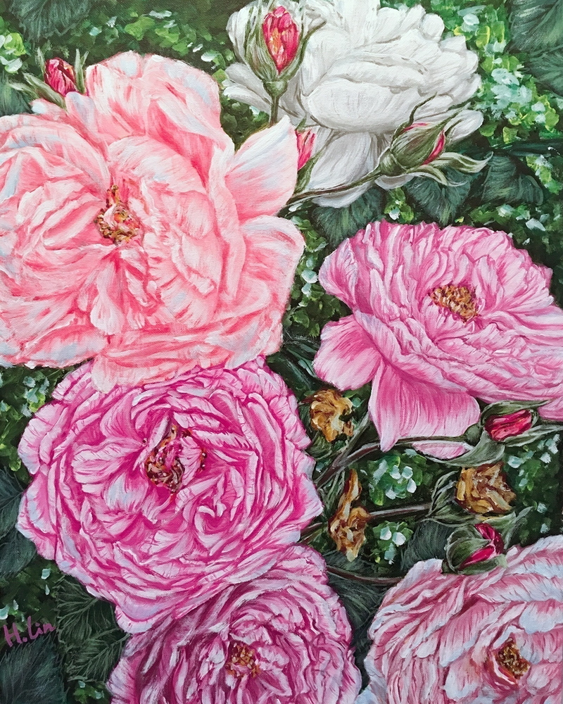 (CreativeWork) SPRING BACK TO LIFE - PEONIES - LIMITED EDITION GICLEE PRINT  Ed. 4 of 100 by HSIN LIN. print. Shop online at Bluethumb.