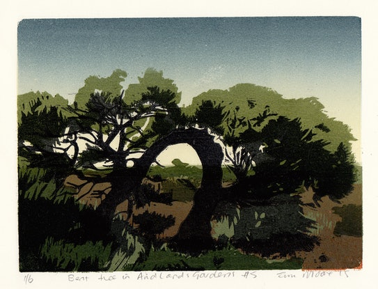 (CreativeWork) Bent tree in Arid Lands Gardens #5 Ed. 1 of 1 by Tina Moore. Print. Shop online at Bluethumb.