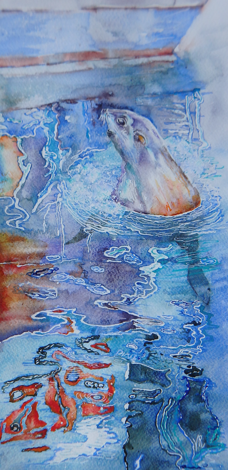 (CreativeWork) Urban Seal by Vicki Reid. Watercolour Paint. Shop online at Bluethumb.