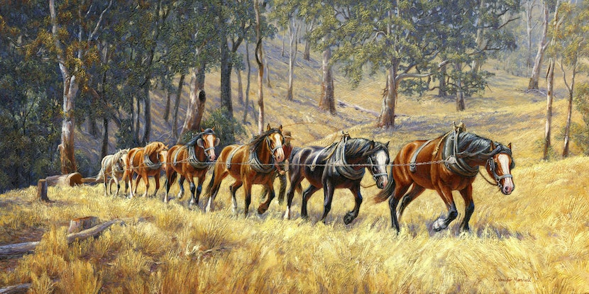(CreativeWork) HAULING HARDWOOD TO THE MILL ( Size D) Ed. 1 of 150 by Jennifer Marshall. Print. Shop online at Bluethumb.