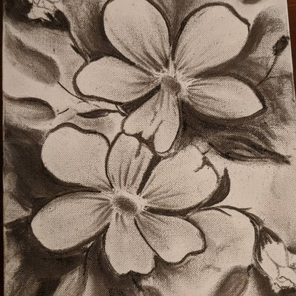 (CreativeWork) Flower by charcoal 1 by Anjali Datar. Other Media. Shop online at Bluethumb.