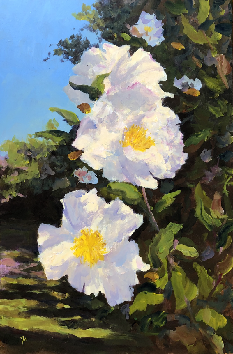 (CreativeWork) White camellia  by Shelly Du. Acrylic Paint. Shop online at Bluethumb.