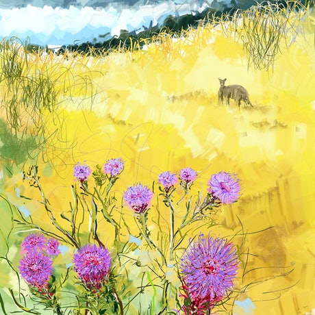(CreativeWork) Milk thistle at the foot hills by Gino Ciancio. Other Media. Shop online at Bluethumb.