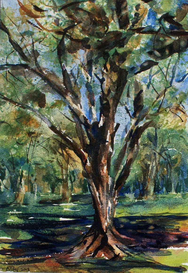 (CreativeWork) Mount Coolum Golf Course  by Ajay Lack. Watercolour Paint. Shop online at Bluethumb.
