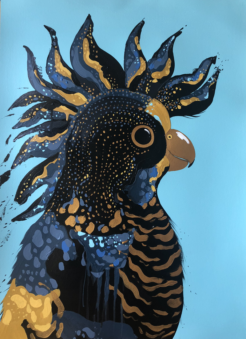 (CreativeWork) Private Commission - Black Cocky  by emma whitelaw. Acrylic Paint. Shop online at Bluethumb.
