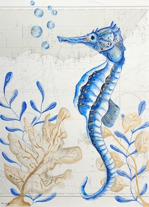 (CreativeWork) Private Commission - Travelling Seahorse by emma whitelaw. Watercolour Paint. Shop online at Bluethumb.