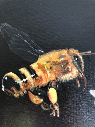 (CreativeWork) Busy Bee by Bernadette McConville. Oil Paint. Shop online at Bluethumb.