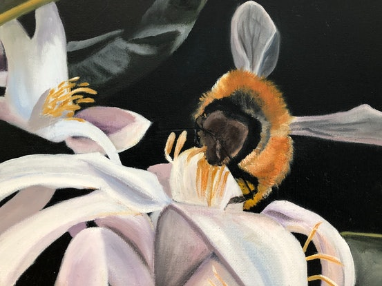 (CreativeWork) Bee on Lemon Tree by Bernadette McConville. Oil Paint. Shop online at Bluethumb.
