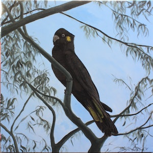 (CreativeWork) Early Morning Visitor by Milinda Hamilton. arcylic-painting. Shop online at Bluethumb.